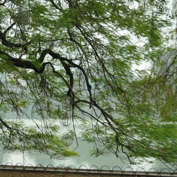 Hanoi-ville4